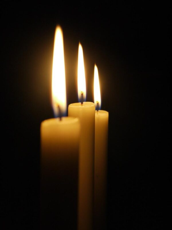 candle 179298 1920 1 600x800 - 12 x Spitzkerze Größe 250 x 23 mm